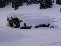 Sfondi Neve