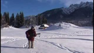 Alaskan Quest Sleddog