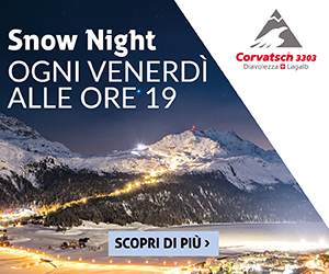 banner snow night